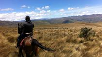 Horseback Riding at Cayambe Volcano from Quito, Quito, Horseback Riding