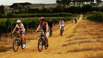 3-Hour Franschhoek Valley Mountain-Biking and Wine-Tasting Tour, Franschhoek, Bike & Mountain Bike...
