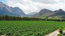 Franschhoek Winelands Guided Half-Day Cycle Tour from Cape Town, Cape Town, Half-day Tours