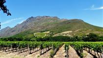 Stellenbosch Winelands Guided Half-Day Tour from Cape Town, Cape Town, Bike & Mountain Bike Tours