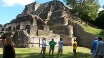 Altun Ha and Howler Monkey Sanctuary Tour