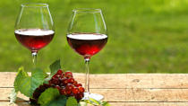 Private Wine Tasting Tour from Makarska Riviera to Peljesac Peninsula , Makarska, Day Trips
