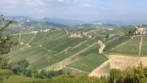 Barbaresco Guided Hike with Brunch and Wines, Langhe-Roero and Monferrato