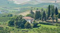 Barbaresco Hiking with Light Lunch and Wines, Langhe-Roero and Monferrato