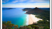 Private Port Stephens Day Trip from Sydney including Dolphin Cruise