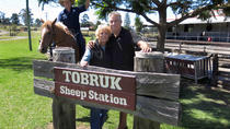 Private Tobruk Sheep Station Day Tour from Sydney Including BBQ Lunch, Sydney