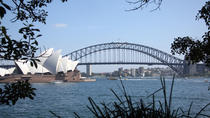 Tour panoramico privato di mezza giornata di Sydney con Opera House, Harbour Bridge e Bondi Beach, ...