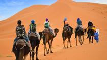 Camel trek from merzouga sahara, Morocco Sahara, Nature & Wildlife