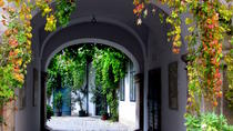 Hidden Gems in Vienna Inner City Private Walking Tour, ウィーン