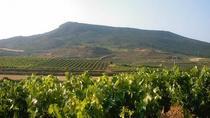Private Wine Tasting Tour in Tenerife