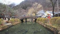 Day Trip to Edo Wonderland including Strawberry Picking, Tokyo, Day Trips