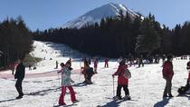 Day Trip to Lake Kawaguchi and Fujiten Snow Resort from Tokyo, Tokyo, Ski & Snow