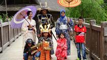 Mount Fuji & Samurai, Kimono and Ninja Costume Experience with Hotel Pick up, Tokyo, Martial Arts...