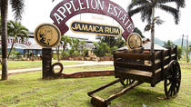Appleton Estate Rum Tour and Tasting from Runaway Bay, Runaway Bay, Day Trips