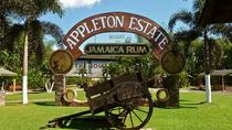 Appleton Estate Rum Tour from Negril, Negril, Half-day Tours