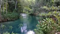 Blue Hole and River Gully Rainforest Adventure Tour from Montego Bay, Montego Bay, Half-day Tours