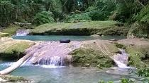 Blue Hole and River Gully Rainforest Adventure Tour from Runaway Bay, Runaway Bay, Half-day Tours