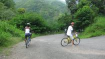 Blue Mountain Bicycle Tour from Kingston, Kingston, Day Trips