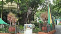 Bob Marley Museum Tour from Ocho Rios, Ocho Rios, Private Sightseeing Tours