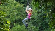 Canopy Zipline & Dunn's River Falls Adventure Tour from Runaway Bay, Runaway Bay, 4WD, ATV & ...