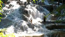 Dunn's River Falls Adventure Tour, Ocho Rios, Nature & Wildlife