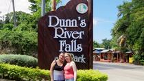 Dunn's River Falls and Fern Gully Highlight Adventure Tour from Kingston, Kingston, Day Trips
