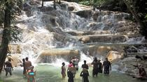 Dunn's River Falls and Fern Gully Highlight Adventure Tour from Ocho Rios, Ocho Rios, Bus & Minivan...
