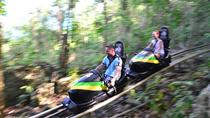 Jamaica Bob Sled, Blue Hole & Bob Marley Nine Miles, 3 Tours from Ocho Rios, Ocho Rios, Day Trips