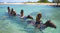 Jamaica Zipline and Horseback Ride n Swim Adventure Tour from Ocho Rios, Ocho Rios, 4WD, ATV &...