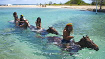 Jamaica Zipline and Horseback Ride n Swim Adventure Tour from Runaway Bay, Runaway Bay, 4WD, ATV & ...