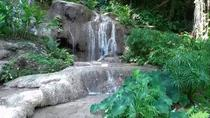 Konoko Falls and Tropical Garden Tour from Runaway Bay, Runaway Bay, Day Trips