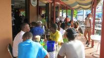 Ocho Rios Pub Crawl and Sightseeing Tour from Ocho Rios, Ocho Rios, Bar, Club & Pub Tours
