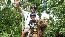 Outback Camel Adventure Tour from Ocho Rios, Ocho Rios, Nature & Wildlife