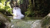 Private Fern Gully, Blue Hole and Bamboo Blu Beach Experience from Ocho Rios, Ocho Rios, Private...