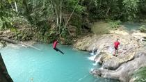 Private Full-Day Tour to the Blue Hole and River Gully Rain Forest from Kingston, Kingston