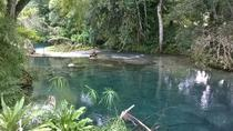 Private Tour: Blue Hole and Fern Gully Rain Forest Adventure from Negril, Negril, null