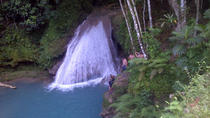Private Tour: Blue Hole and Fern Gully Rain Forest Adventure from Ocho Rios, Ocho Rios