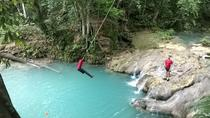 Private Tour Blue Hole and River Gully Rain Forest Adventure Tour from Kingston, Kingston, Half-day ...