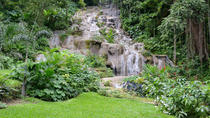 Shared Konoko Falls and Tropical Garden Tour from Runaway Bay, Runaway Bay, Day Trips