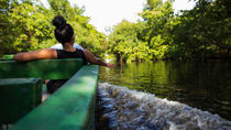 Sunset Boat Tour into the Caroni Wetlands from Port of Spain, Trinidad and Tobago, Cultural Tours