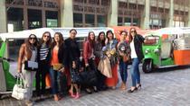 Amsterdam Small-Group Sightseeing Tour by Tuk Tuk