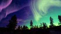 Small-Group Northern Lights Tour by Super Jeep from Reykjavik, Reykjavik, Night Tours