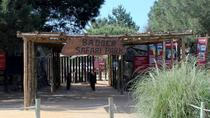 Badoca Safari Park Day Trip from Lisbon, Lisbon, Safaris
