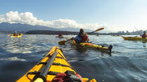 Nature Kayak Tour in Vancouver, Vancouver, Kayaking & Canoeing
