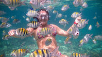 4-Hour Private Yacht Tour with Open Bar, Ceviche, and Snorkeling, Playa del Carmen, Private ...