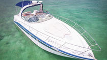 4-Hour Private Yacht Tour with Open Bar, Ceviche, and Snorkeling, Playa del Carmen, Day Cruises
