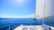 Half-Day Private Catamaran Tour with Open Bar in Playa del Carmen, Playa del Carmen, Private ...