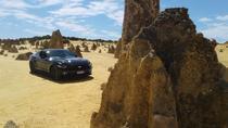 Pinnacles Mustang V8 Full Day including Swan Valley, Caversham Wildlife Park, Perth, Nature &...