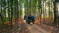 Bandhavgarh Tour with Kanha National Park, Madhya Pradesh, Attraction Tickets