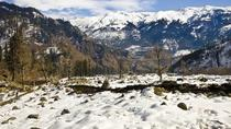 Beautiful Manali, Manali, Multi-day Tours